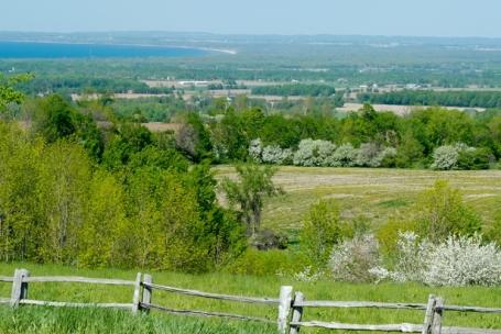 Rose Murray Farm-3